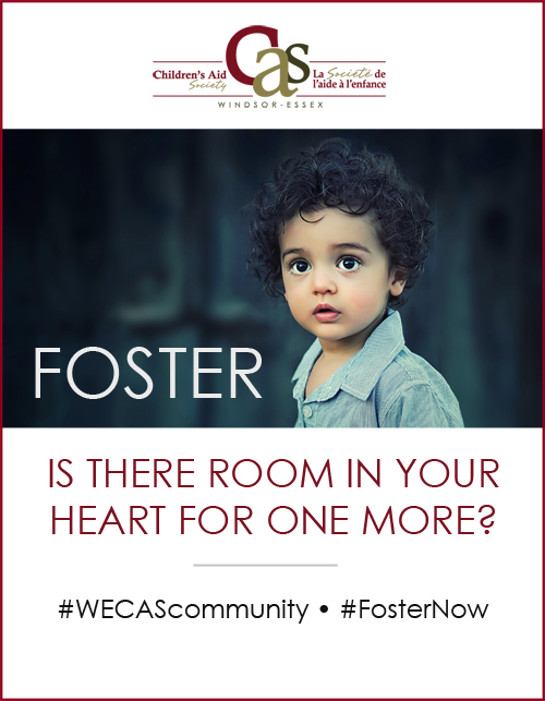 Foster Info Session